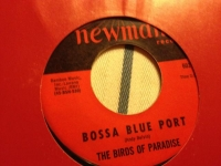 Birds of Paradise - Bossa Blue Port